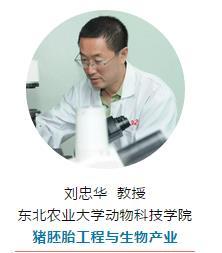东北农业大学动物科技学院 猪胚胎工程与生物产业