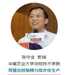 华南农业大学动物技术学院 母猪定时输精与批次化生产