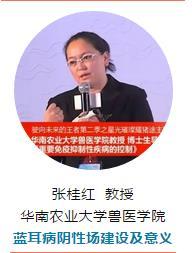 华南农业大学兽医学院 蓝耳病阴性场建设及意义